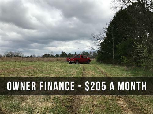 6 Acres On Conservation Area : Ava : Douglas County : Missouri