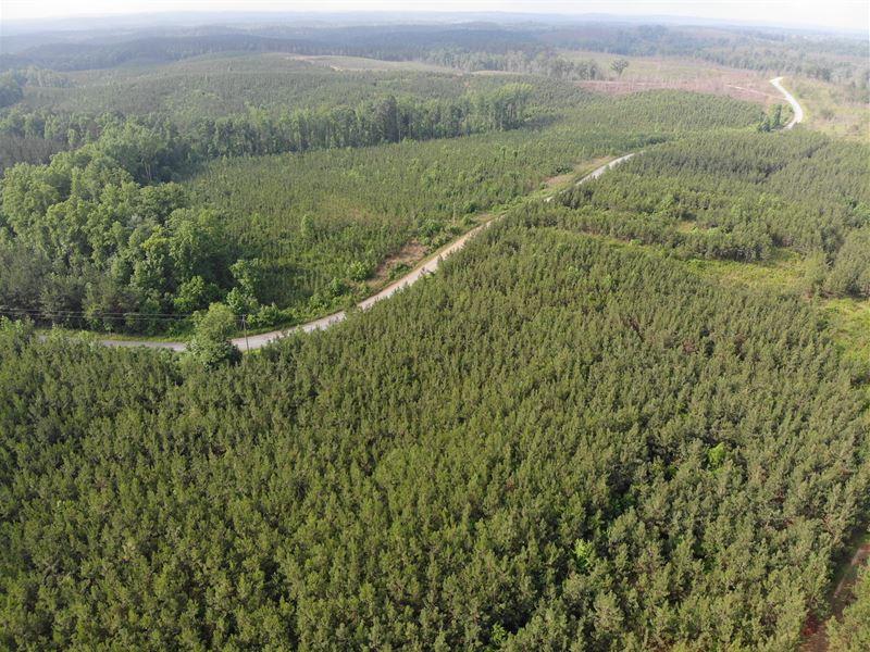 Treat Mountain Tracts, New Price : Cedartown : Polk County : Georgia