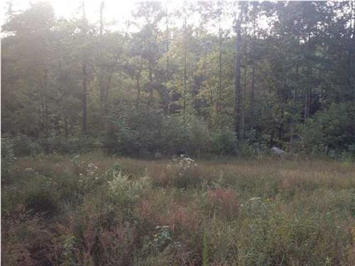 93.91+/-Acres Perfect Hunting Land : South Pittsburg : Marion County : Tennessee
