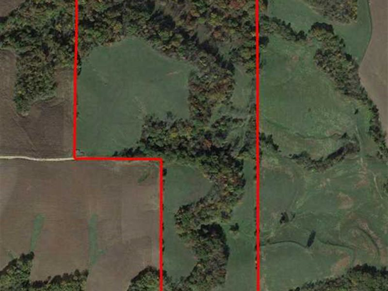 60 Secluded Acres of Exceptiona : Atchison : Doniphan County : Kansas