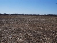 20 Acres Development Lot 4 : Harrisonville : Cass County : Missouri