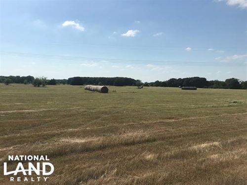Pasture, Trees, 10 Acres, Mabank IS : Mabank : Kaufman County : Texas