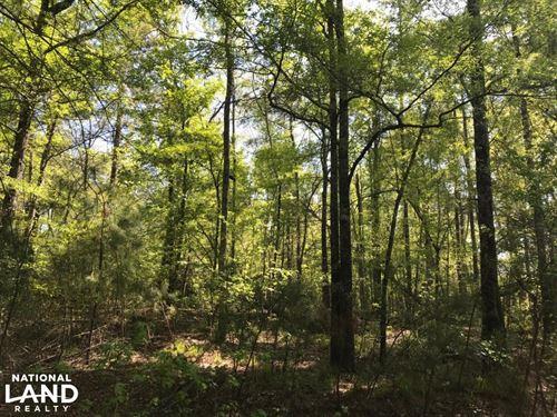 Hwy 45 Home Site : Jamestown : Berkeley County : South Carolina