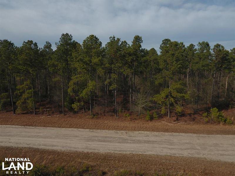 Pamlico 30 : Arapahoe : Pamlico County : North Carolina