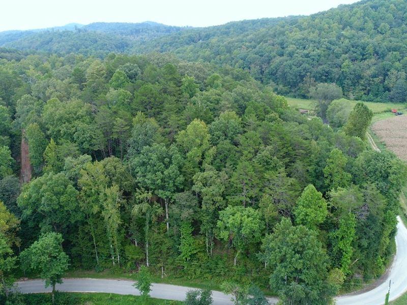 Timber, Mountain Views, Development : Travelers Rest : Greenville County : South Carolina