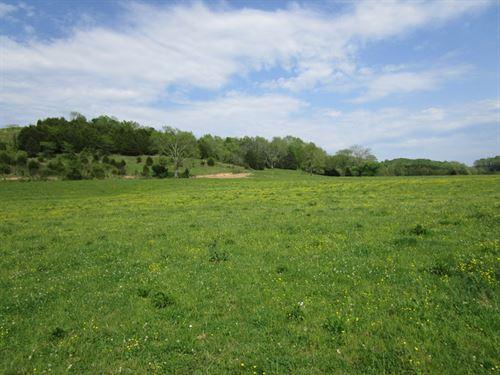 126 Acres In Metcalfe County, Ky : Edmonton : Metcalfe County : Kentucky
