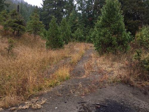 Reston Small : Reston : Douglas County : Oregon