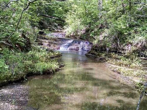 29.22 Surveyed Acres With Cree : Dennard : Van Buren County : Arkansas