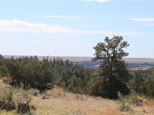 160 Acres, More OR Less - Recreati : Springview : Keya Paha County : Nebraska