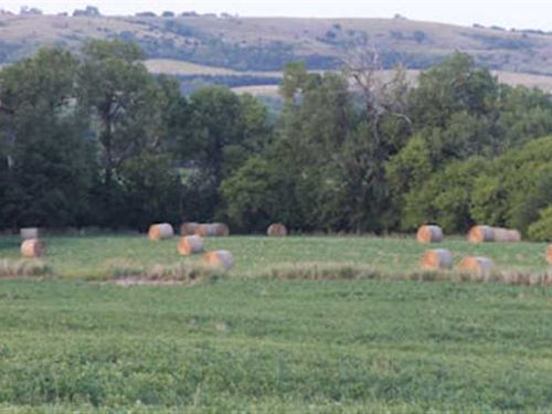 60 Acres, More OR Less, Wrp & Rec : Verdigre : Knox County : Nebraska