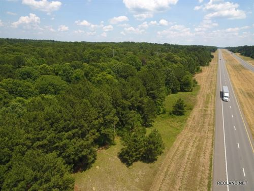 50 Ac - Mixed Timberland With Excel : Tenaha : Panola County : Texas