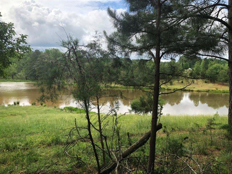 Pleasant Hill Farm : Martin : Franklin County : Georgia