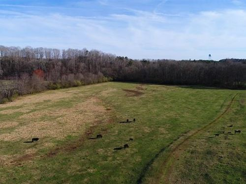 Pasture With Hwy Frontage : Wesminster : Oconee County : South Carolina
