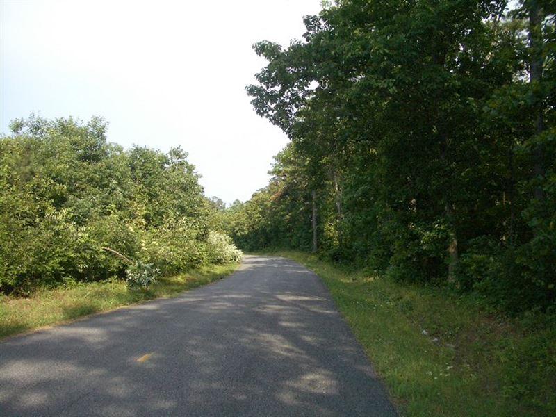 190.7 Ac - Pine Ridge Road Tract : White : Bartow County : Georgia