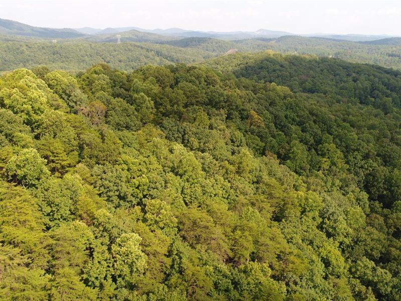 Tiny Cabin With Acreage : Pickens : Pickens County : South Carolina