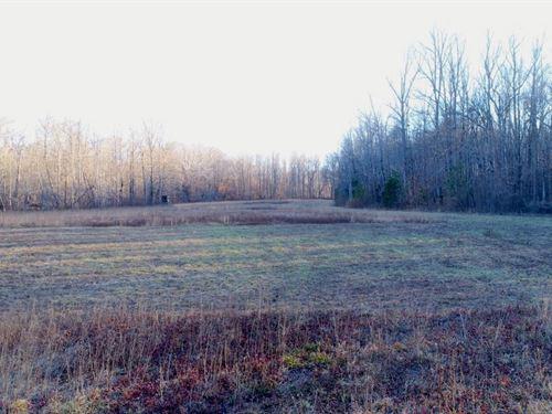 Pasture, Mountain Views, Creek : Taylor : Greenville County : South Carolina