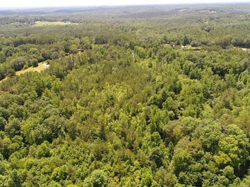 Waterfall, Cave, Mountain Views : Walhalla : Oconee County : South Carolina
