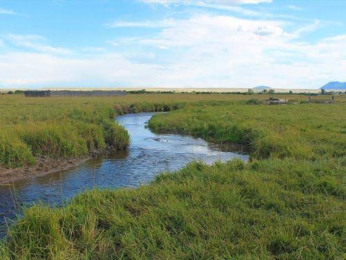 Snowy Range Livestock Ranch : Laramie : Albany County : Wyoming