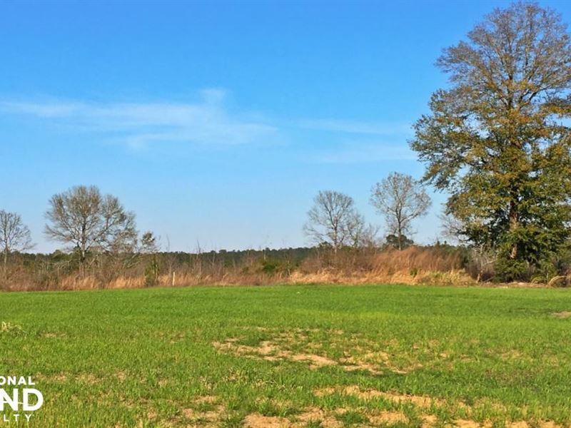 Flat Creek Hunting And Timber Inves : Wagarville : Washington County : Alabama