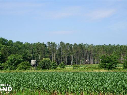 Grace Farm Timber Investment And Hu : Alpine : Talladega County : Alabama