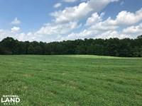 Mini Farm And Homesite, 6.14 Acres : Belton : Greenville County : South Carolina