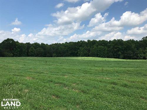 Mini Farm And Homesite, 6.14 Acres : Belton : Greenville County : South Carolina