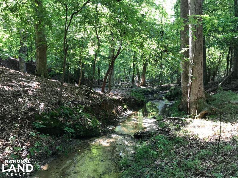 Mini Farm And Homesite, 8.08 Acres : Belton : Greenville County : South Carolina