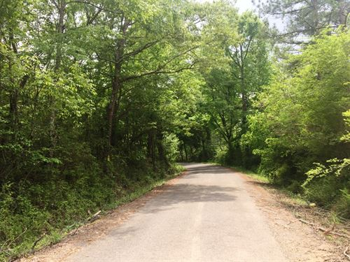 Dake Road Tract : Decatur : Meigs County : Tennessee