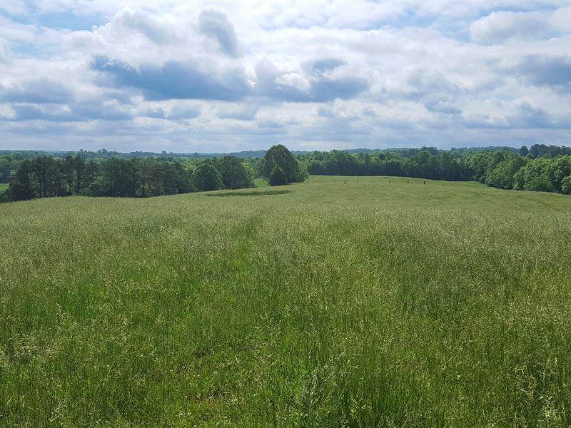 Absolute - 152 Acres On Elk Creek : Goode : Bedford County : Virginia