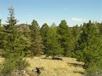 2450602 - Perfect 35 Acres For The : Cotopaxi : Fremont County : Colorado