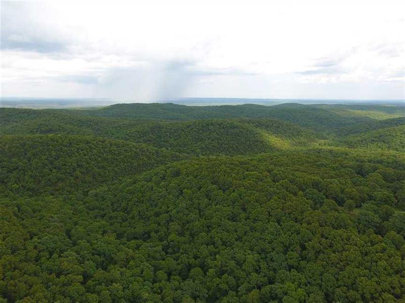 295-Acre Development/Recreational : Kirbyville : Taney County : Missouri