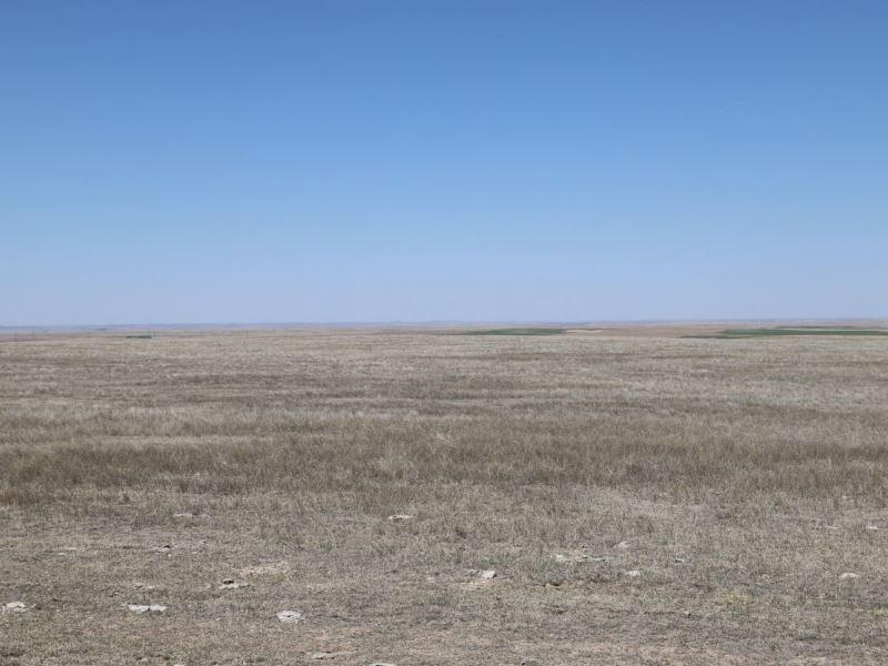 West Logan County Pasture : Sterling : Logan County : Colorado