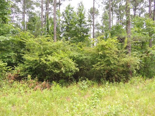 5.79 Ac On Terrell Rd. : Greenville : Meriwether County : Georgia