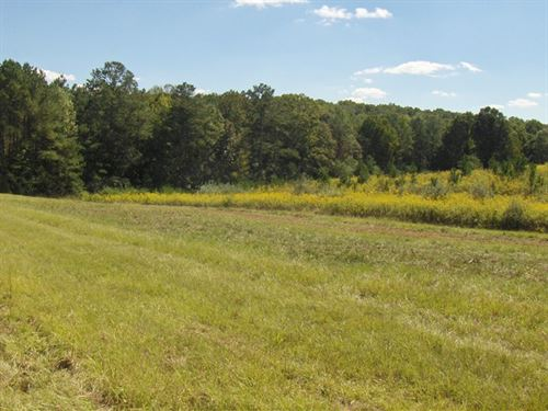 100 Ac On Terrell Road : Roopville : Heard County : Georgia