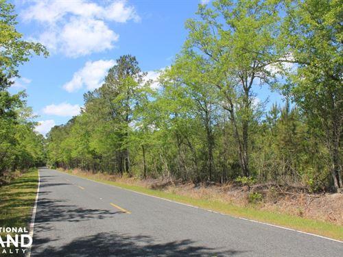 Lebanon Area 9 Acres : Summerville : Berkeley County : South Carolina