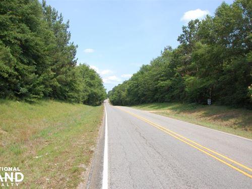 Pine Timberland-Hwy 1057 : Kentwood : Tangipahoa Parish : Louisiana