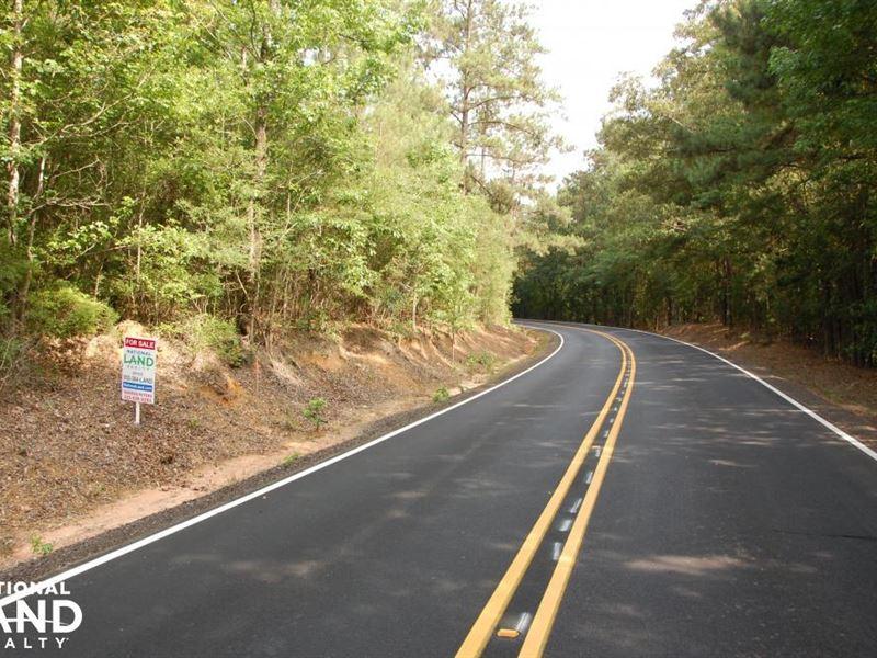 Rural Residential/Timber Tract Hwy : Kentwood : Tangipahoa Parish : Louisiana
