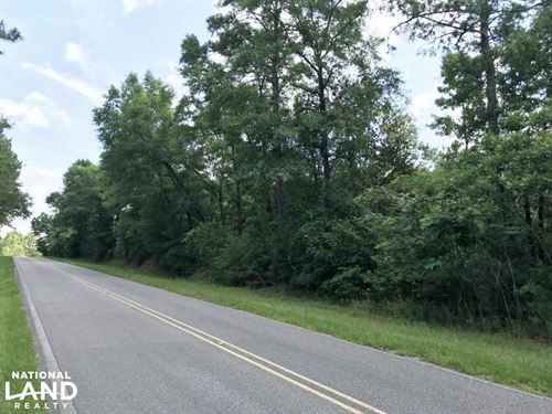 The Canaan Road Tract : Stockton : Baldwin County : Alabama