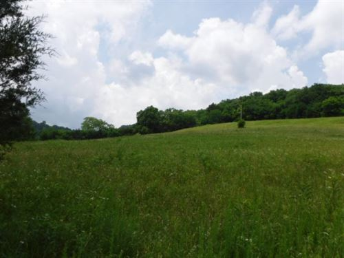 28 Acres, Views, Country Location : Liberty : Dekalb County : Tennessee