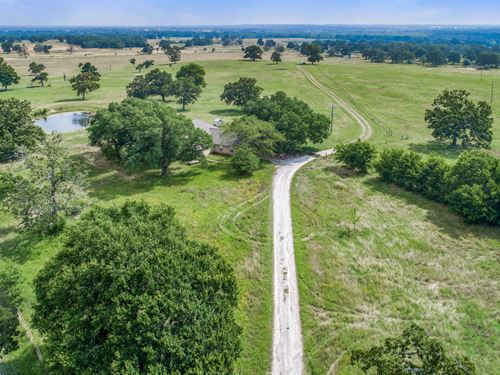 1161 Acres In Madison County : Normangee : Madison County : Texas