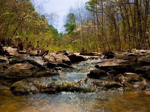 Beautiful Stream Property 191 : Wilburton : Latimer County : Oklahoma