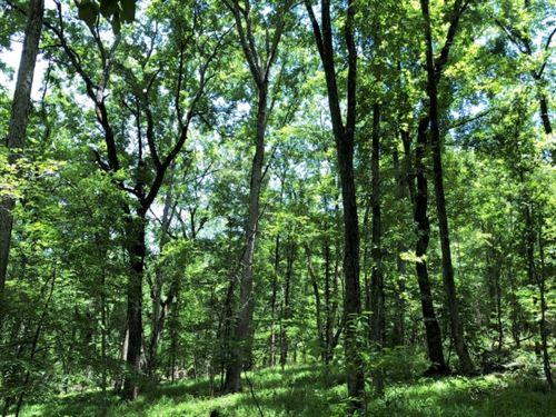 Hunting Acreage - Lake Sinclair Acc : Eatonton : Putnam County : Georgia