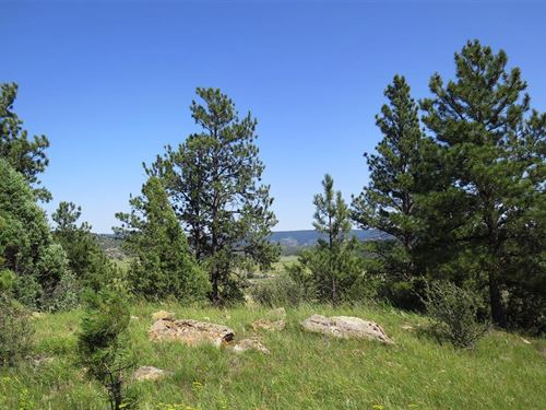 Valley View Acreage : Newcastle : Weston County : Wyoming