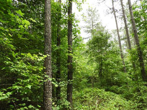 Cross Plains : Carrollton : Carroll County : Georgia