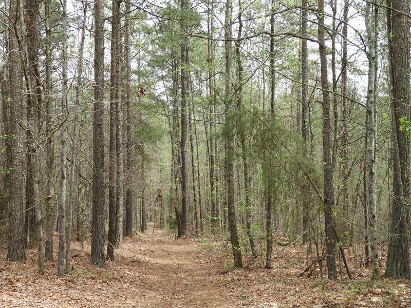Banks Mill : Douglasville : Douglas County : Georgia