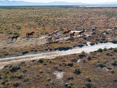 Cheapest 160 Acres In Lassen County : Herlong : Lassen County : California