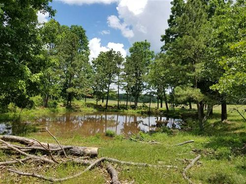Land For Sale Beautiful 80 Ac : Doniphan : Ripley County : Missouri