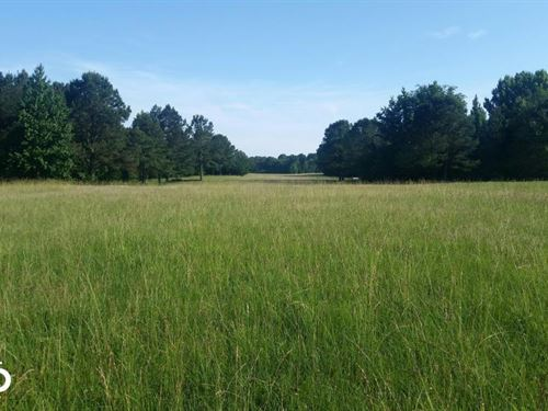 Acreage And Pasture Close to Oxford : Oxford : Lafayette County : Mississippi