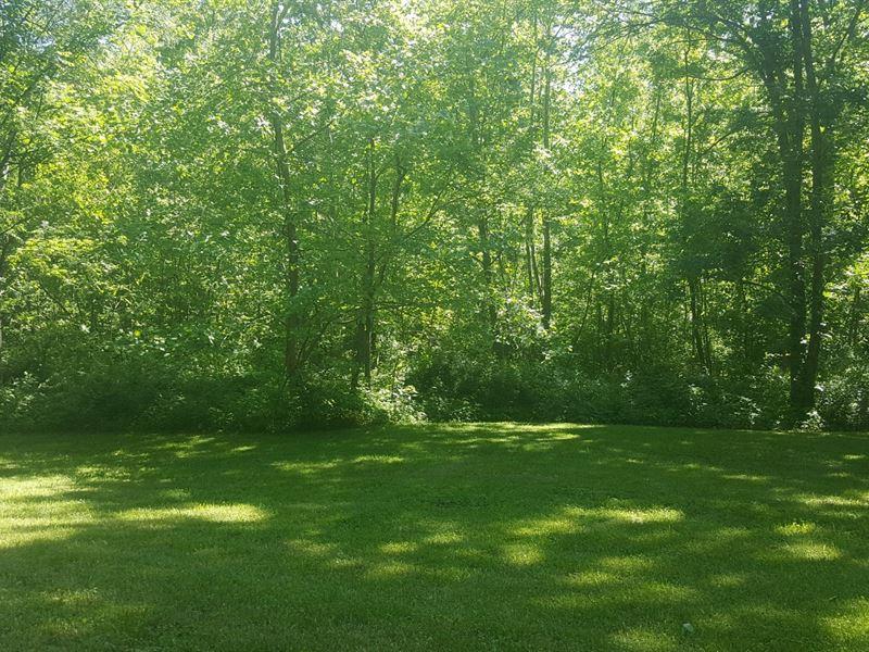 Beech Fork Rd - 7 Acres : Otway : Adams County : Ohio