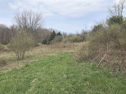 Cream Ridge Rd, 41 Acres : Lisbon : Columbiana County : Ohio